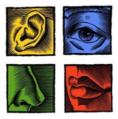 5 senses.2
